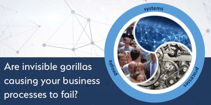 Are invisible gorillas causing your business processes to fail?